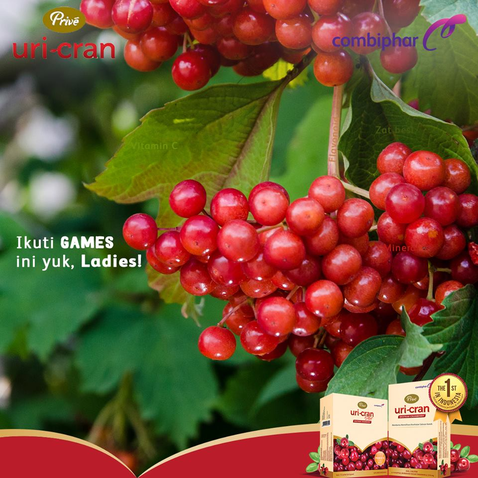anyang-anyangan infeksi saluran kemih infeksi saluran kemih berulang ekstrak cranberry penyebab infeksi saluran kemih obat infeksi saluran kamih obat anyang-anyangan gejala infeksi saluran kemih gejala infeksi saluran kemih infeksi saluran kemih pada wanita hamil bahaya infeksi saluran kemih prive uri-cran ekstrak cranberry